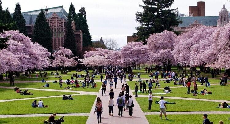 เรียนซัมเมอร์ต่างประเทศ Study abroad in University of Washington (UW) USA